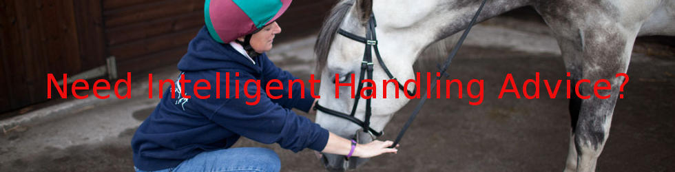 Click here to get intelligent handling advice